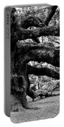 Angel Oak Tree 2009 Black And White Portable Battery Charger by Louis Dallara