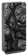 Angel Oak Tree Americana Portable Battery Charger