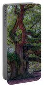 Angel Oak Tree Deeply Rooted History Portable Battery Charger
