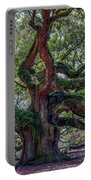 Angel Oak Tree Salt Of The Earth Portable Battery Charger