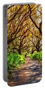 Angel Oaks In Sunshine Portable Battery Charger