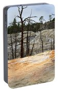 Angel Terrace At Mammoth Hot Springs Yellowstone National Park Portable Battery Charger