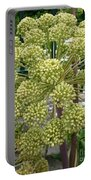 Angelica Portable Battery Charger