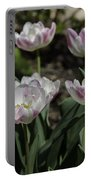 Angelique Peony Tulips Squared Portable Battery Charger