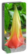Angel's Trumpet 2 Portable Battery Charger