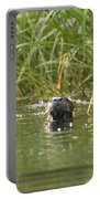 Angry Otter Portable Battery Charger