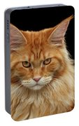Angry Ginger Maine Coon Cat Gazing On Black Background Portable Battery Charger