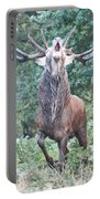 Angry Stag Portable Battery Charger
