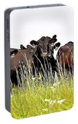 Angus Heifers Portable Battery Charger