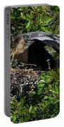 Anhinga Feeding Portable Battery Charger