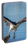 Animal - Bird - Osprey Catching A Fish Portable Battery Charger