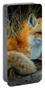 Animal - The Alert Fox  Portable Battery Charger