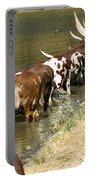 Ankole-watusi Cattle Portable Battery Charger