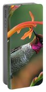 Anna's Hummingbird 1 Portable Battery Charger