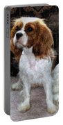 Annie Portable Battery Charger