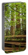 Another Split Redwood Portable Battery Charger