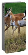 Antelope 1 Portable Battery Charger