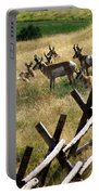 Antelope 2 Portable Battery Charger