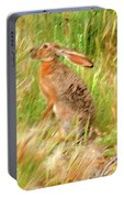 Antelope Jackrabbit Portable Battery Charger