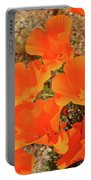 Antelope Valley Poppy Portrait Portable Battery Charger