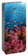 Anthias Fish And Soft Corals, Fiji Portable Battery Charger