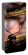 Ants Adventure Portable Battery Charger by Bob Orsillo