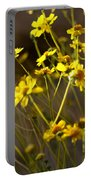 Anza Borrego Desert Sunflowers 1 Portable Battery Charger