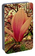 Aphrodite Rising Portable Battery Charger