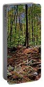 Appalachian Trail Clearing Portable Battery Charger