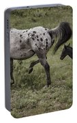 Appaloosa And Baby Portable Battery Charger