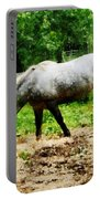 Appaloosa Eating Hay Portable Battery Charger