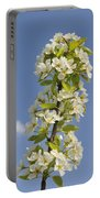 Apple Blossom In Spring Portable Battery Charger by Matthias Hauser