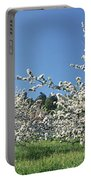 Apple Blossom Trees Norway Portable Battery Charger