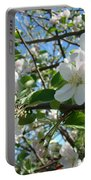 Apple Blossoms Art Prints 60 Spring Apple Tree Blossoms Blue Sky Landscape Portable Battery Charger