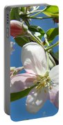 Apple Blossoms Art Prints Blue Sky Spring Baslee Troutman Portable Battery Charger
