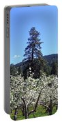 Apple Orchard In Bloom Portable Battery Charger