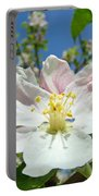 Apple Tree Blossom Art Prints Springtime Nature Baslee Troutman Portable Battery Charger