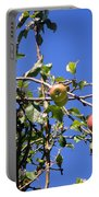 Apple Tree With Apples And Flowers. Amazing Nature Portable Battery Charger