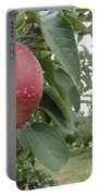 Apples 101010 Portable Battery Charger