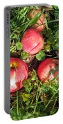 Apples From My Garden Portable Battery Charger
