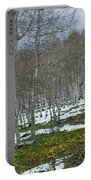 Approaching Spring In The Aspen Forest Portable Battery Charger by Cascade Colors