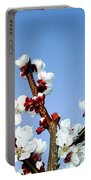 Apricot Blossoms Portable Battery Charger