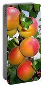 Apricots Portable Battery Charger by Will Borden