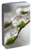 April Ice Storm 5 Portable Battery Charger