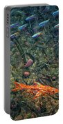 Aquarium 2 Portable Battery Charger by James W Johnson