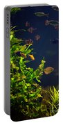 Aquarium Fish And Plants In Zoo Portable Battery Charger
