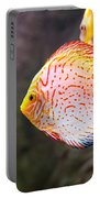 Aquarium Orange Spotted Fish Portable Battery Charger