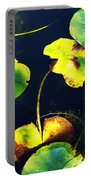 Arboretum Morning Portable Battery Charger