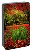 Arboretum Primary Colors Portable Battery Charger