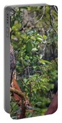 Arbutus Eagle Portable Battery Charger